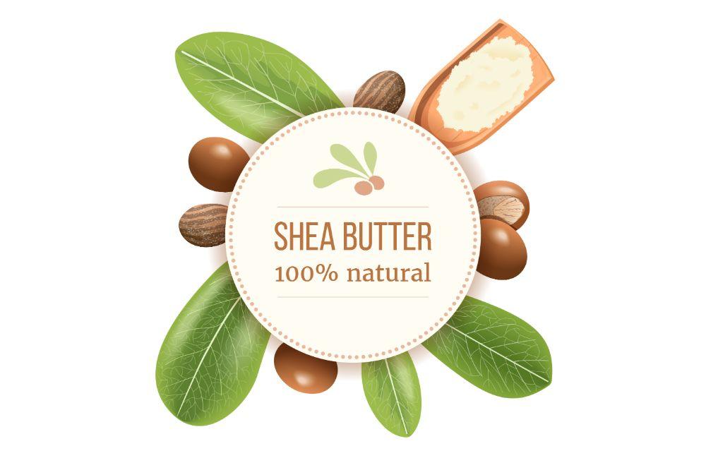 Ripe shea nuts and leaf Round Circle badge